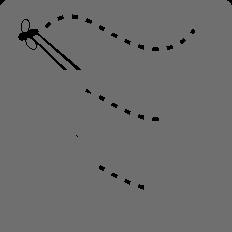 praktyka czyni mistrza